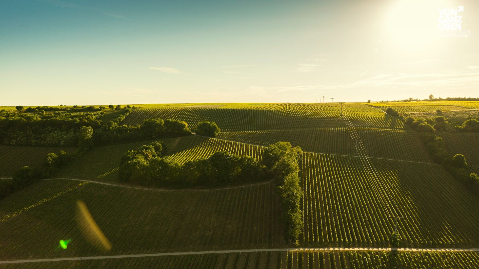 Luftbild Oppenheimer Weinberge