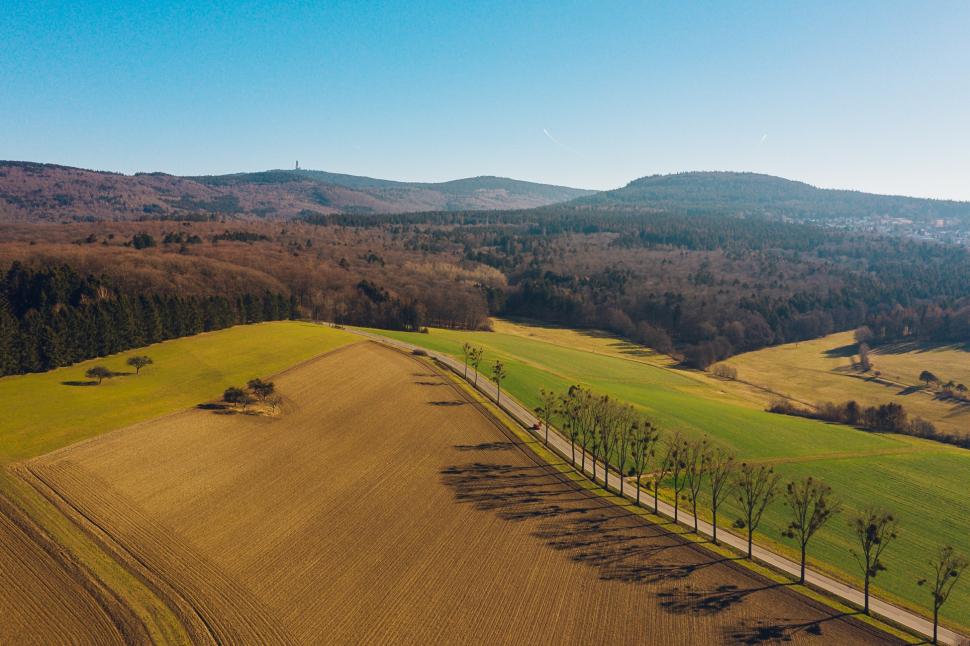 Bäume bei Idstein-Kröftel