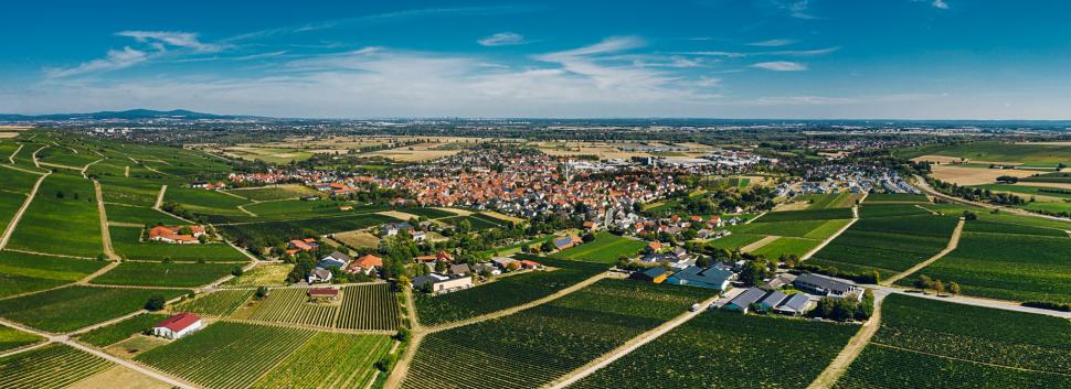Luftbild Bodenheim