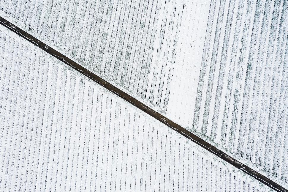 Luftbild Bodenheim im Schnee